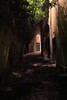 (Michael Adedokun) Tags: picture canon historical scary empty street france avignon inbetween windows curve buildings shadow natural nature leafs light photography photo image nightphotography alley alleyways