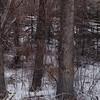 Spring Fish Creek Park Hiking (Mr. Happy Face - Peace :)) Tags: yyc hiking walking albertabound bowriver calgary alberta canada bikepaths scenery snowing chill art2018