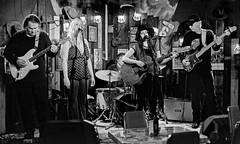 Hitting Their Groove (brev99) Tags: nikon50mmf18d d610 soulcity erinodowd musicians band guitarist singers club stage topazsoftware niksoftware blackandwhite chloejohns topazdenoise nikviveza dxofilmpack5 colorefex