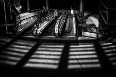 Le monde des ténèbres / The dark world (vedebe) Tags: noiretblanc netb nb bw monochrome ville city rue street urbain urban ombres ombre lumière lumières homme humain human people escaliers architecture