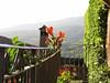 Toskana (D. W.) Tags: toskana toscana italien italy travale casaalfango canon sommer sonnenschein sonnenlicht berge urlaub balkon