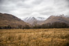 Loch Awe (cookedphotos) Tags: canon 5dmarkiv travel scotland unitedkingdom argyll bute landscape grass mountain snow tree green bare dying harsh 365project p3652018 lochawe gb