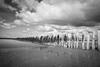 Beach 2 (LAK.Photography) Tags: strand beach sky himmel clouds cloud wolken outdoor sand sandstrand schwarzweis schwarzweiss schwarz weiss bw blackwhite black white whiteblack nikon d810 tamron niederlande holland netherlands 2470mm 24mm