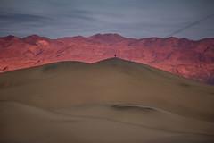 (kenbruger) Tags: mesquiteflatssanddunes deathvalleynationalpark deathvalley california nikon d810