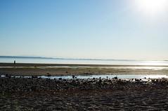 Crescent Beach (Alanna's Photos) Tags: summer bluesky sonya5000 sony sunset throughherlens beachdays beautifulbc beach crescentbeach