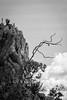 Rochedo e galho (Johnny Photofucker) Tags: rolamoça rochedo galho rock mountain montanha montagna pedra stone pietra preto branco black white nero bianco bw pb lightroom 24105mm minasgerais mg brumadinho nuvem cloud nuvola noiretblanc