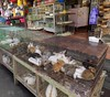 Java East-Malang Pasar Burung 20171211_101053 DSCN0323 (CanadaGood) Tags: asia asean seasia indonesia indonesian java eastjava jawatimur malang shopping vendor animal market rabbit cage canadagood 2017 thisdecade color colour javanese