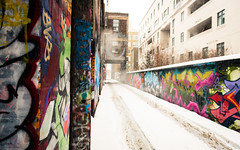Graffiti Alley - Snow (Katherine Ridgley) Tags: toronto rushlane alley graffiti graffitialley city downtown urban streetphotography streetart street art artspace tag tagging tagged stock stockphotography season seasonal winter cold snow slush lane building buildings paint spraypaint graffitiart 6 the6 the6ix six thesix weather falling fallingsnow