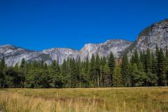Yosemite.Road.2600p.270 (l.dardennes) Tags: yosemite yosemitenationalpark california usa canoneos7dmarkii sigma1750mmf28 yosemitevalley étatsunis us