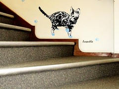 Caught blue pawed 🐱 (pefkosmad) Tags: museum museumofgloucester gloucestershire gloucester city stairs staircase steps cat tabby paws paint blue naughty mischief beastie streetart graffiti spraycan spray aerosol humour funny localstreetartist localgraffitiartist graf