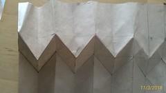 P_20180311_140422_1_p (contrechoc) Tags: pleating plissé folding