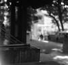 支持構造 (support structures) (Dinasty_Oomae) Tags: ricohflexnewdia ricohflex リコーフレックス リコーフレックスニューダイヤ 白黒写真 白黒 monochrome blackandwhite blackwhite bw outdoor 東京都 東京 tokyo 港区 minatoku 赤坂 akasaka 乃木神社 generalnogishrine shrine 神社 泉 spring