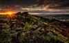 Surprise View (peterwilson71) Tags: sunset beautiful clouds canon6d exposure evening foliage grass green skys longexposure landscape leaves moss nature outdoors rocks sky stone sun travel trees view wild otley yorkshire