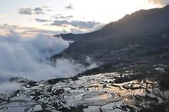 DSC_0615 (tcchang0825) Tags: terrace hani yunnan yuanyang sunrise