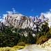 Her Majesty, Mt Whitney, CA 99
