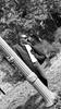 T5 (Snap Shot Shogun) Tags: model male man black heritage durham bullcity northcarolina north carolina sony a77 artistic tobacco brick artsy art fashion duke chapel