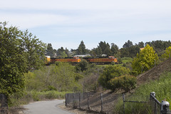 Meanwhile, on the Other Railroad (imartin92) Tags: pinole california bnsf railroad railway freight train ge generalelectric c449w dash9 locomotive