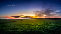 Coucher de soleil sur la campagne champenoise ! (Cedraw) Tags: sky sunscape sun beautiful beautifulnice beautifulnature beautifulpicture fantasticnature soe sonyxperia sonyxperiaz5c sony xperia z5compact z5 mobil mobilphone coucherdesoleil landscapedreams landscape campagne nature light