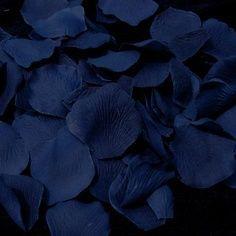 #Roses: Navy Petals http://ift.tt/2p4rPK5 (thed4rkestrose) Tags: roses