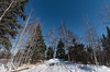 Temperance River State Park Campground in Winter (Tony Webster) Tags: minnesota temperanceriverstatepark campground campsite snow winter schroeder unitedstates us
