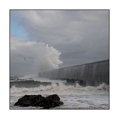 24/100x (neals pics) Tags: 100xthe2018edition 100x2018 image24100 my100x–squareformat waves water sea coast coastal harbour wall rocks aberdeen scotland uk spray storm