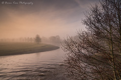 Mist On The Eden (.Brian Kerr Photography.) Tags: cumbria landscapephotography landscape briankerrphotography briankerrphoto photography edenvalley rivereden lazonby lazonbybridge mistymorning mist trees sunrise river reflections sky clouds nature naturallandscape natural outdoor outdoorphotography opoty onlandscape beautifulmorning tree water mountain
