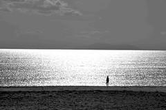 (jaume zamorano) Tags: 7dwf blackandwhite blancoynegro blackwhite blackandwhitephotography blackandwhitephoto d5500 cambrils monocromo minimalism platja playa beach noiretblanc