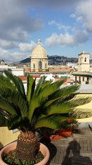 Naples - Italy (Been Around) Tags: rooftopterrace rooftopterracehotelunanapoli hotelunanapoli hotel naples napoli neapel campania kampanien ita italia italy italien palm palme terrasse urlaub frühstück