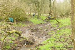 P1270697 (Pitzy's Pyx, keep snapping away!.) Tags: greensandtrust greensandvolunteers lumixfz1000 riverflit greensandridge sandysmithnaturereserve