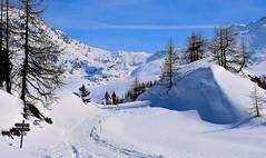 Love (luca2142) Tags: italy italia alpi alps alpiretiche neve snow couple coppia love amore campagneda lombardia lombardy lanzada caspoggio caruncasch prabello rifugiocristina