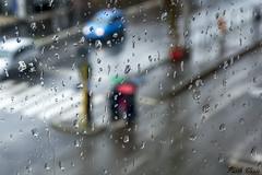 Piove - It's raining (Pablos55) Tags: pioggia rain gocce drops sfondo background sfocato blur