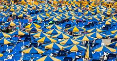 VERY COSY! (mark_rutley) Tags: cannaries grandcanaria holiday vacation sunlounger parasol beach