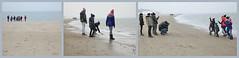 """""""Une famille de photographes..."""", De Banjaard, Kamperland, Noord-Beveland, Zeelande, Nederland (claude lina) Tags: claudelina nederland hollande paysbas zeelande zeeland merdunord noordzee plage dune beach debanjaard kamperland noordbeveland"""