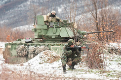 180323-A-FI259-0076 (U.S. Department of Defense Current Photos) Tags: strongeurope atlanticresolve usarmyeurope eucom nsta barbaric bsast blacksea bulgaria mechanized novoselo bg