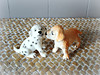 Don't kiss me! (Deejay Bafaroy) Tags: puppy puppies welpe welpen dog dogs hund hunde playscale schleich bullyland miniature miniatur doggy doggies hündchen