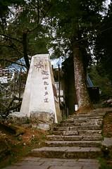 阿里山之旅2018 (紅色小草) Tags: agfa400 nikonfa 85f14 3520 28mmf28