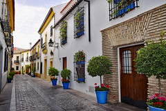 San Basilio, Cordoba (Jocelyn777) Tags: architecture houses streets flowers plants foliage cities towns historictowns andalucia cordoba spain travel