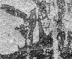 goudron 6x7-4 (abdelkrim13) Tags: goudron graphique abstrait 6x7 hp5400 lc29 119 7min45