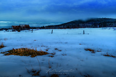 First signs of spring (JPLapointe) Tags: ngc nikon nationalgeographic nationalgeographique nuages neige nature natural natgeo nokond810 barn snow sapin froid fence givre grange canada charlevoix ciel colors clouds cielbleu cloud cheznousauquebec fonte grass hiking brume arbres