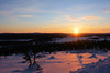 Arctic Sun (gooey_lewy) Tags: sweden sunset arctic snow light sun colour scene twilight horizon beauty beautiful norbotton norbotten vidsel mountain scandinavia gold golden sky tree trees cloud silhouette