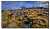 Kings Tor (jeremy willcocks) Tags: eukkingstor dartmoor devon ukjeremywillcocksc2018fujixpro2xf1024mm landscape moor moors colour sky granite grass wwwsouthwestscenesmeuk