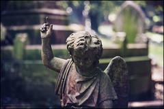 Er, excuse me (G. Postlethwaite esq.) Tags: belper dof derbyshire angel beyondbokeh bokeh boneyard cemetery closeup depthoffield graves photoborder selectivefocus srtone statue wings