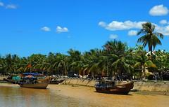 Vietnam (sami 51) Tags: vietnam water palmiers nikon boat outdoor extérieur hué la rivière des parfums