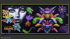 Tag - Bordeaux Rive Droite (Jean-Pierre Verduzier) Tags: tag streetart bombe peinture ruines bordeaux taggers peintres couleur dessin art tableaux