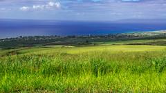 Hawaii USA - Kauai  Island - Waimea Canyon State Park (Feridun F. Alkaya) Tags: kauai kauaiisland usa hawaii waimeacanyonstatepark waimea waimeacanyon hawaiiisland ngc