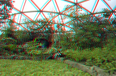 Amazonica Dome Diergaarde Blijdorp Rotterdam 3D GoPro (wim hoppenbrouwers) Tags: amazonica dome diergaarde blijdorp rotterdam anaglyph stereo redcyan gopro 3d