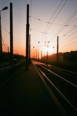 57860036 (Philipp Lillo) Tags: saintpetersburg filmphotografy filmisnotdead film 35mm 35mmfilm olympus olympuslt1 russia