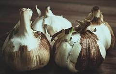 Knoblauch geräuchert (Toledo 22) Tags: closeup vegetables garlic geräuchert rauch food gemüse knoblauchzehen knoblauch