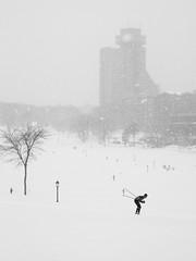 En ski de fond sur les Plaines d'Abraham (ValerieBoulva) Tags: fuji xt1 fujinon50mm20 québec quebec canada neige snow hiver winter blanc bw blackandwhite blackwhite nb noiretblanc noirblanc