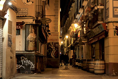 Night life (Daniel Nebreda Lucea) Tags: night noche city ciudad streetcalle atmosphere atmosfera life vida walking andando people gente lights luces light luz shadow sombra shadows sombras urban urbano long exposure larga exposicion old vieja antigua travel viajar zaragoza aragon spain españa europe europa canon 60d 50mm floor suelo architecture arquitectura street calle pubs bares enjoy divertirse shops tiendas work trabajo